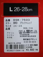 Dsc05519_2